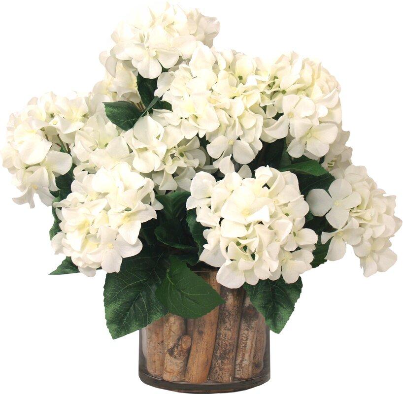 Hydrangea Birch in Flower Pot & Reviews | Joss & Main