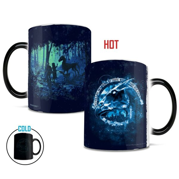 Harry Potter Coffee Mug Wayfair