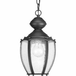 Triplehorn 1-Light Classic Hanging Lantern