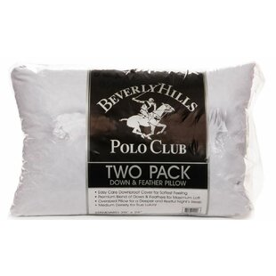 Crew Medium Down and Feather Standard Pillow (Set of 2)