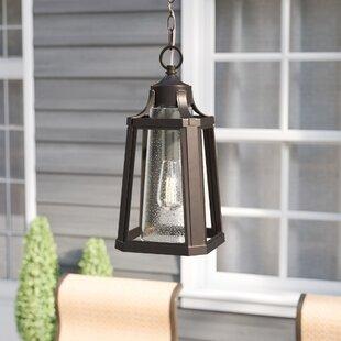 Gracie Oaks Nitish Palladian Bronze 1-Light Outdoor Hanging Lantern