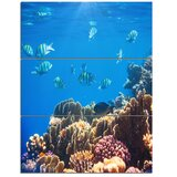3 Piece Coral Canvas Art You Ll Love In 2020 Wayfair