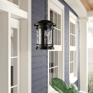 Ashberry 1-Light Outdoor Hanging Lantern