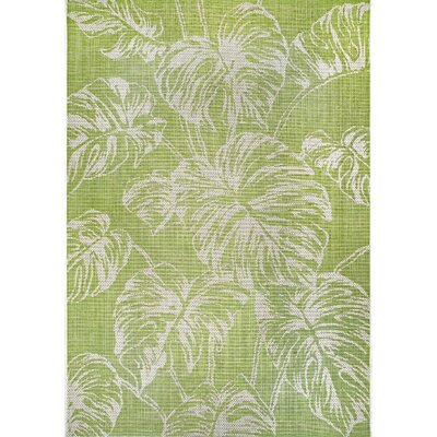 5 X 8 Green Area Rugs You Ll Love In 2020 Wayfair