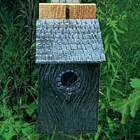 Montague Metal Products Inc. 11 in x 8 in x 5 in Bluebird House