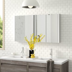 Arnetta 120cm X 65cm Surface Mount Mirror Cabinet By Zipcode Design