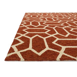 Danko Hand-Hooked Rust/Ivory Indoor/Outdoor Area Rug