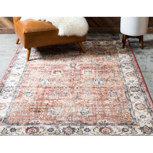 Ballys Power Loom Synthetic Terracotta Indoor Area Rug by World Menagerie