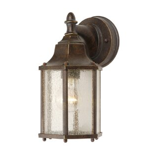 1-Light Outdoor Wall Lantern by Mariana Home