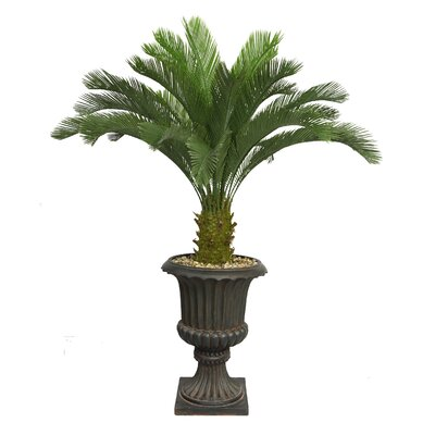 entracing palm tree type house plant. Tall Floor Cycas Palm Tree in Urn Nearly Natural Areca  Reviews Wayfair