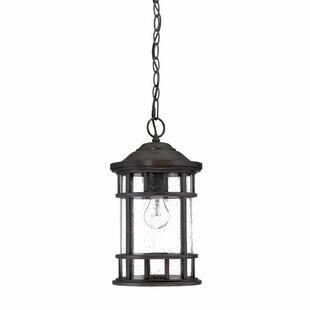 Ferryhill 1-Light Outdoor Hanging Lantern