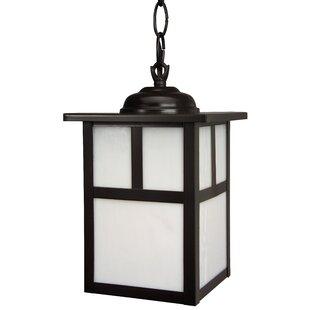 Charlton Home Biali 1 Light Outdoor Hanging Lantern