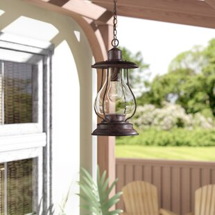 Beachcrest Home Carina 1-Light Outdoor Pendant