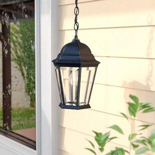 Astoria Grand Bellver Traditional 1-Light Outdoor Hanging Lantern