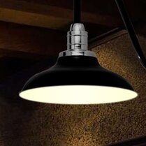 Deals Peony 1-Light Outdoor Barn Light By Cocoweb