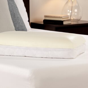 Comfort Revolution Lifestyle Now 2 in 1 Reversible Memory Foam Standard Pillow