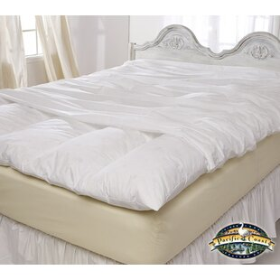 Alwyn Home Zip Closure Feather Mattress Protector