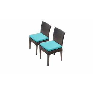 Meier Patio Dining Chair with Cushion (Set of 2) by Rosecliff Heights