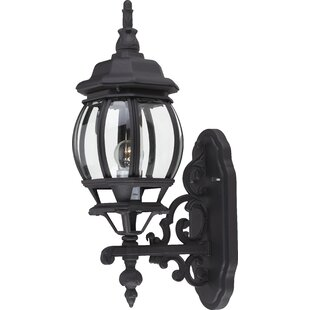 Top Reviews Talon 1-Light Outdoor Sconce By Astoria Grand