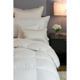 Lullaby Siberian Lightweight Down Comforter By Cozy