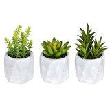 3 Artificial Succulent in Pot Set