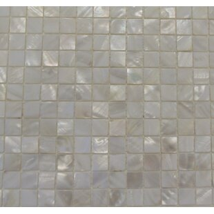 Mesh Mounted 1 x 1 Authentic Polished Seashell Mosaic Tile