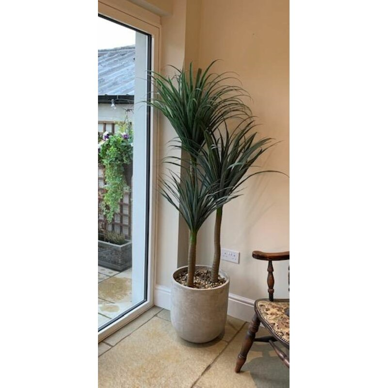 The Seasonal Aisle 150cm Artificial Yucca Tree In Planter Wayfair Co Uk