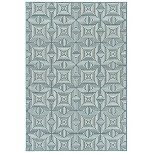 Earp Light Blue Indoor/Outdoor Area Rug