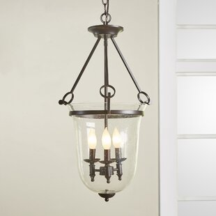Birch Lane? Heritage Timberlake 3-Light U..
