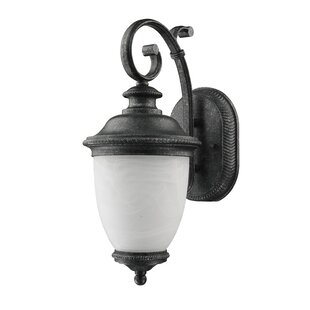 Great Price Diop Frosted Outdoor Coach Lamp (Set of 2) By Astoria Grand
