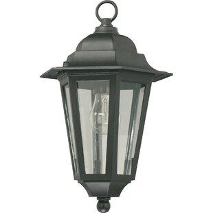 Beachcrest Home Mehar 1-Light Outdoor Hanging Lantern