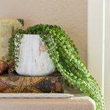 12.5'' Artificial Succulent Plant in Pot
