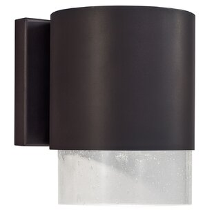Bulter 1-Light Outdoor Wall Lantern