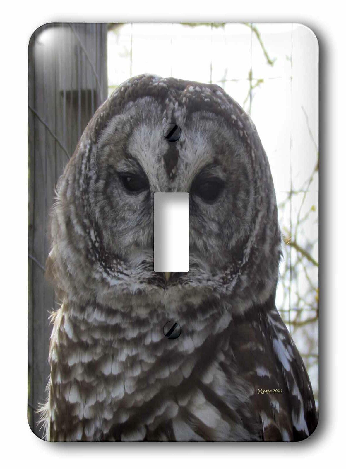 3drose Barred Owl Single Toggle Light Switch Wayfair