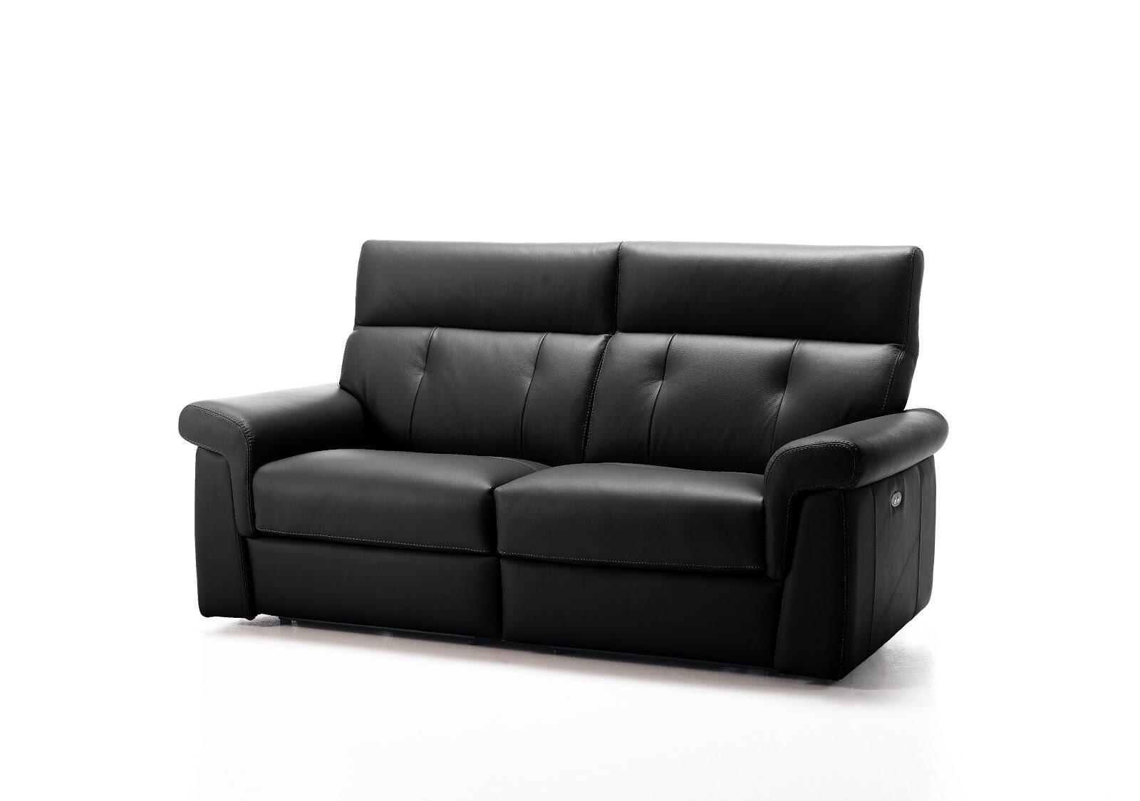 Brilliant Ernesto Genuine Leather Sofa Interior Design Ideas Gentotthenellocom