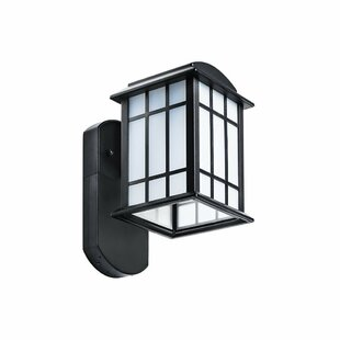 Bazeley Camera-Less Companion Outdoor Wall Lantern