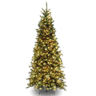 3733952314350 Tiffany Fir 7.5  Green Artificial Christmas Tree with 550 Clear Lights and  Stand