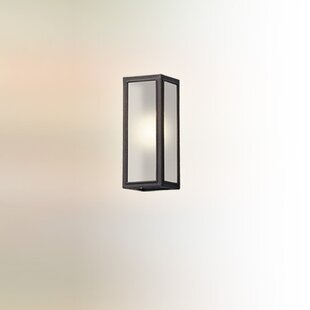 17 Stories Satyadev 1-Light Glass Shade Outdoor Flush Mount