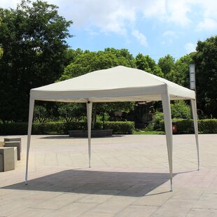 10 Ft. W x 10 Ft. D Pop-Up Canopy by Baner Garden