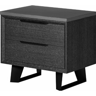 Soleil 2 Drawer Nightstand by Orren Ellis