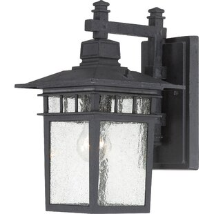 Beachcrest Home Valeri 1-Light Glass Shade Outdoor Wall Lantern