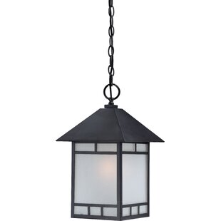 Read Reviews Oralia 1-Light Outdoor Hanging Lantern By Bloomsbury Market