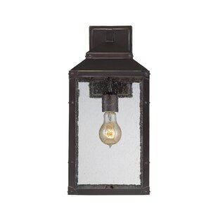 Great Price Knushevia 1-Light Outdoor Wall Lantern By Brayden Studio