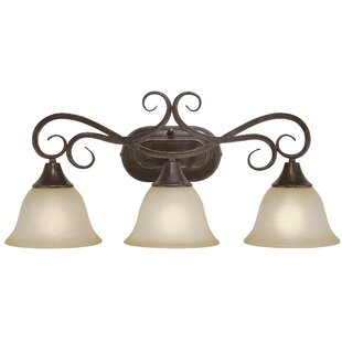 Fleur De Lis Living Wiliams 3-Light Vanity Light