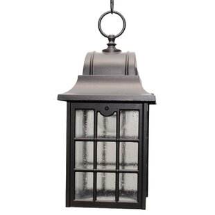 Shopping for Archard 1-Light Outdoor Hanging Lantern By Darby Home Co
