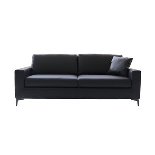 Hanna Sleeper Sofa by Brayden Studio Cheap
