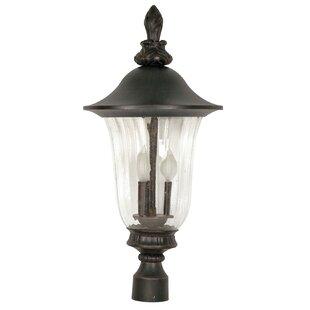 Brigham 3-Light Lantern Head by Charlton Home