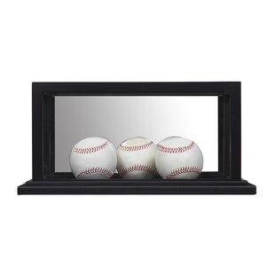 Gallery Solutions Baseball Ball/Puck Case By Nielsen Bainbridge