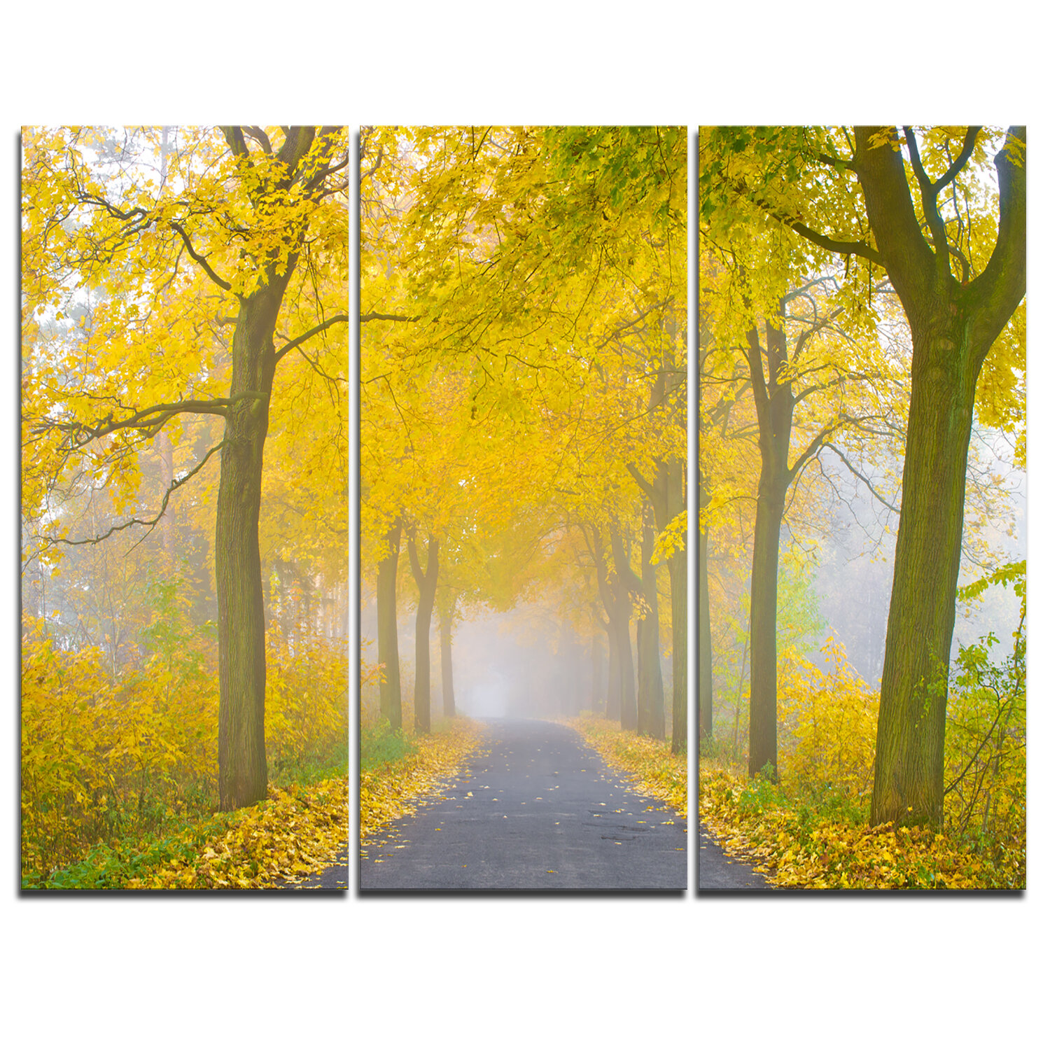 Designart Misty Road In Yellow Autumn Forest 3 Piece Graphic Art On Wrapped Canvas Set Wayfair