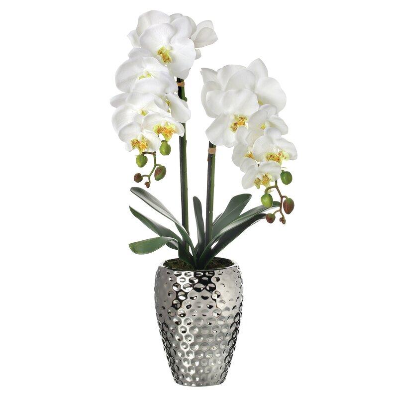 floral home decor orchid floral design wayfair.htm wrought studio orchid floral arrangement in decorative vase  wrought studio orchid floral